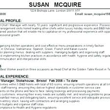 Cv Personal Profile Examples Personal Statement Resume