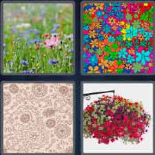 4 pics 1 word 7 letters level 3732 flowery