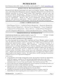 peter hays resume amp tech summary