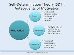 how to write an essay introduction about self determination theory review open access exercise physical activity and self
