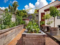 Small Picture Courtyard garden and landscape design Northshore