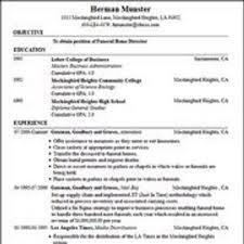 Fake Resume Generator Pelosleclaire Com