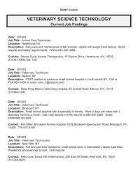 Veterinarian Sample Job Description Veterinary Assistant Resumeles