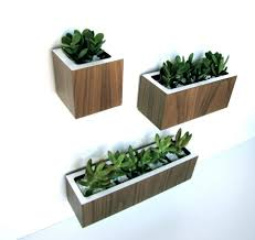 large size of exquisite painted color ideas mounted wooden boxes green trailing plants baskets 945x890