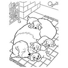 Small Picture Top 30 Free Printable Puppy Coloring Pages Online