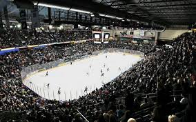 Image result for Everett Silvertips