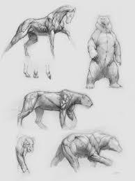 Sketches Animal Artstation Animal Anatomy Sketches Ben Judd