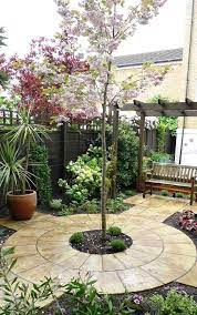 12 tiny trees for small yards