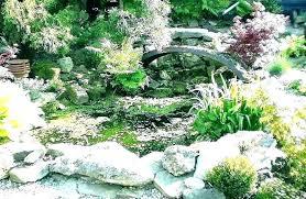 indoor rock garden small ideas front yard50 garden