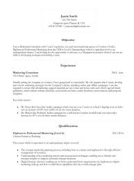 basic curriculum vitae template free cv template layout fius tk