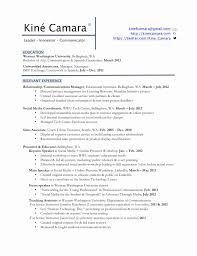 Profile In Resume Example For Student Resume Template