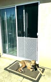 dog door scratch guard uk scratching scratched up frame protector sliding glass started at night when