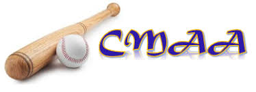 Image result for corunna minor baseball