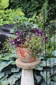 container garden pro