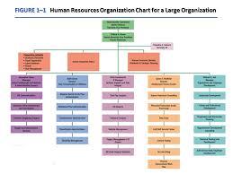 Human Resource Department Organizational Chart 11 Hr Org Chart Chart2 Paketsusudomba Co Typical Hr Org