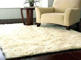 4 by 5 rug 4 x rug fresh 5 x 5 rug from outdoor rug 4 x 4 ruger super blackhawk 4 5 8 vs 55 4 5 rugby