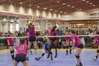 Dominique Albright's Women's Volleyball Recruiting Profile