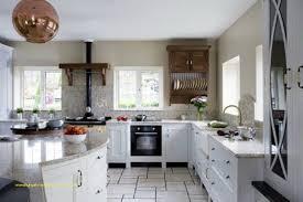 kitchen remodel naples fl for home design best of kitchen cabinets naples fl