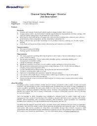 Regional Sales Manager Job Description Resume Sidemcicek Com