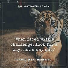Quotes About Challenges Mesmerizing Life Challenges Quotes Challenge Quotes About Love And Life Life