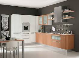 Modern Style Kitchen Cabinets Contemporary Kitchen Cabinets With Modern Room Nuances Ruchi Designs