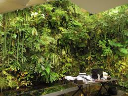 Small Picture The House of a Master Vertical Garden Designer