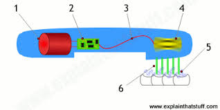 electric motor brush diagram. The Components Inside An Ultrasonic Electric Toothbrush. Motor Brush Diagram