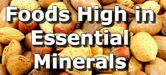 Chart Of Different Food Items Top 15 Foods Highest In Minerals