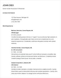 Example Basic Resume Magnificent Example Of Basic Resume Basic Resume Example Basic Resume Template