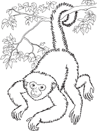 Small Picture Baby Monkey Coloring Pages Smiling Hanging Monkey Coloring Page