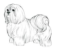 Dog Color Page Cute Dog Coloring Pages Prairie Dog Color Page