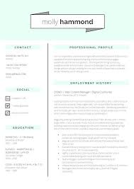 CV Writing Services Bristol   CV Master Careers       Years of CV     Sample Application Letter College Student