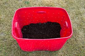 using your compost bin