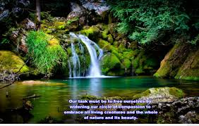 Wallpapers nature quotes and images hd