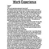 Essay On Work Experience Is The Best Teacher Mistyhamel