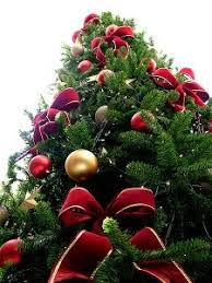 Image result for christmas tree by train depot