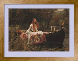 essay on the lady of shalott   limited time offer buy it now