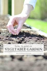 planning a vegetable garden nick alicia