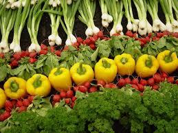 Produce Design