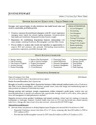 Executive Resumes Templates Magnificent Sales Account Executive Resume Example
