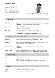Professional Curriculum Vitae Template Beauteous Sample Curriculum Vitae Format Specimen Of Famous Or Template