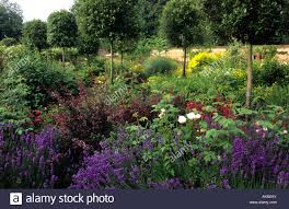 Small Picture private garden Hampshire design Pamela Woods mixed shrub border