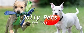 Kuvahaun tulos haulle Jolly Pets Tug-n-Toss