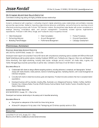 10+ north american resume format