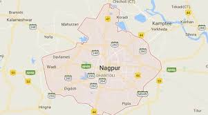 Nagpur Attack: Forensic Report Says Meat Being Carried Was Beef ...