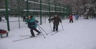Конспект урока по физической культуре для учащихся класса Лыжная  одной ногой с лыжей опираясь на палки
