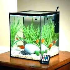 Fish Tank Ideas Office Desk Aquarium E Decorating