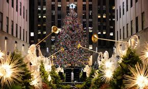 Backyard Spruce Chosen For Rockefeller Center Christmas Tree