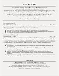 Financial Analyst Resume Examples Free Resume Examples