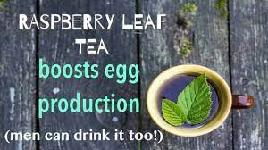 the delicious tea that boosts egg